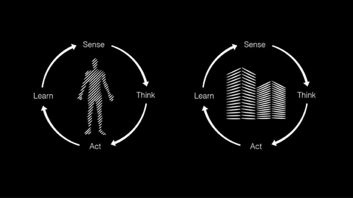 true-presence-learn-think-grafik.jpg